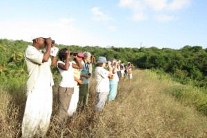 17. Mombasa Bird Watchers