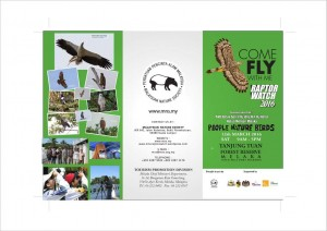 19. Raptor Watch 2016 poster